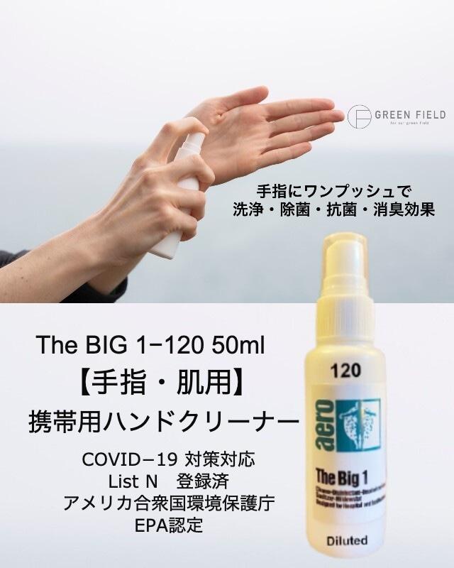 ノンアルコール除菌洗浄剤 [手指・肌用] ビッグワン 120 洗浄・除菌スプレー 50ml ✕ 10本セット 感染症対策対応(送料無料)