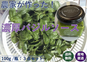 【和歌山県産】バジルソース【1瓶/100g】【3瓶セット】【送料無料】