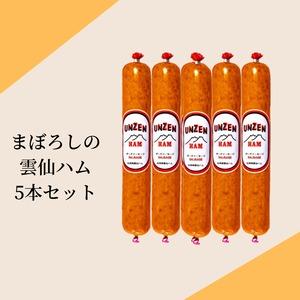 幻の雲仙ハム 5本セット