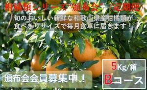 こだわり和歌山県産柑橘類 頒布会(定期便)Bコース【ご家庭用】【5kg /箱×6回コース】送料無料