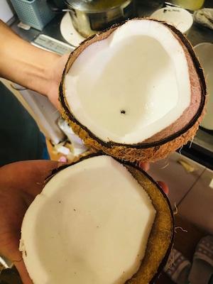 ベトナムドライココナッツ 2個・Dry Coconut