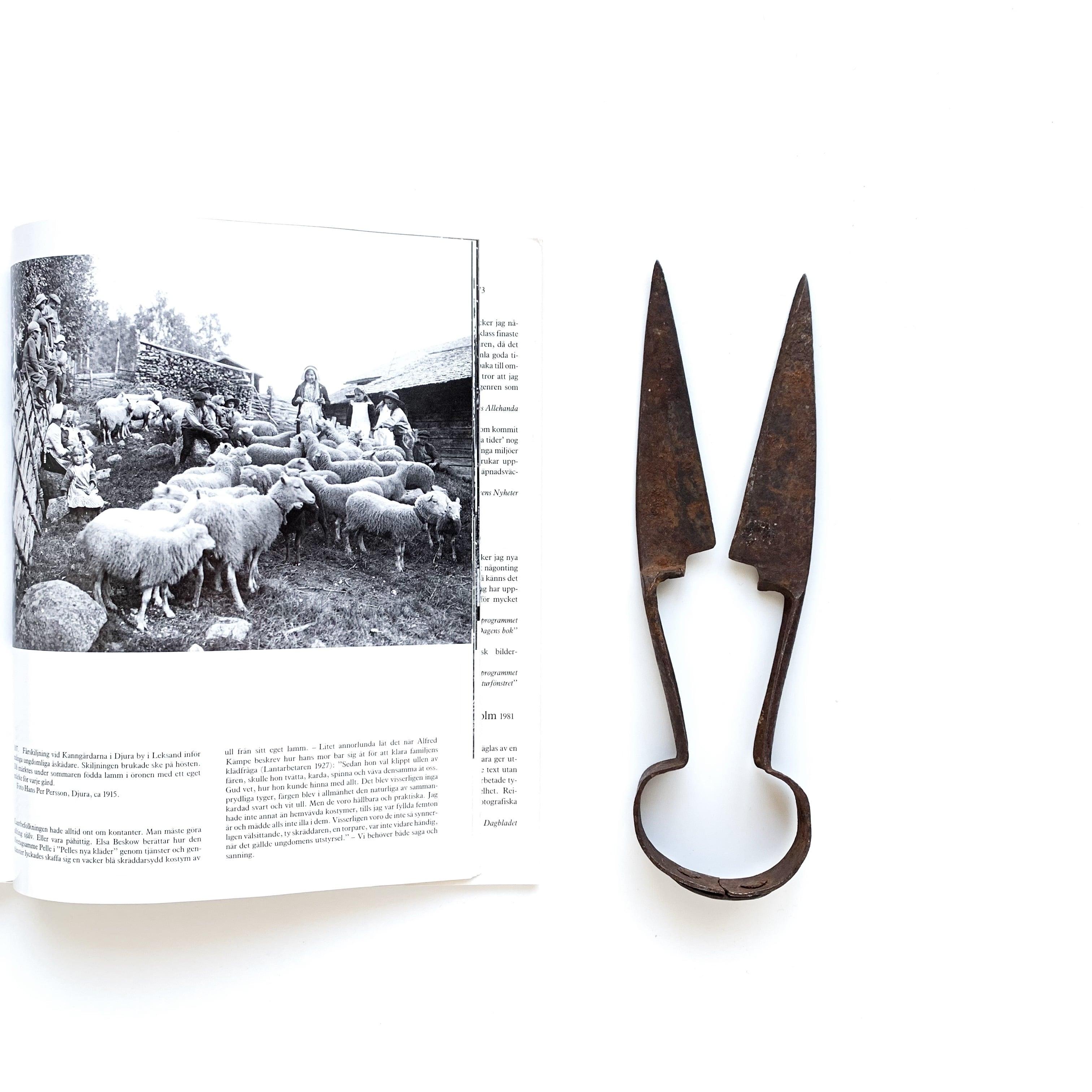 Sheep Scissors