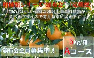 こだわり和歌山県産柑橘類 頒布会(定期便)Aコース【ご家庭用】【5kg /箱×3回コース】送料無料