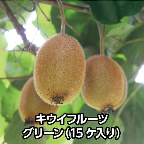 キウイフルーツ グリーン(15ケ入り)【送料込み】
