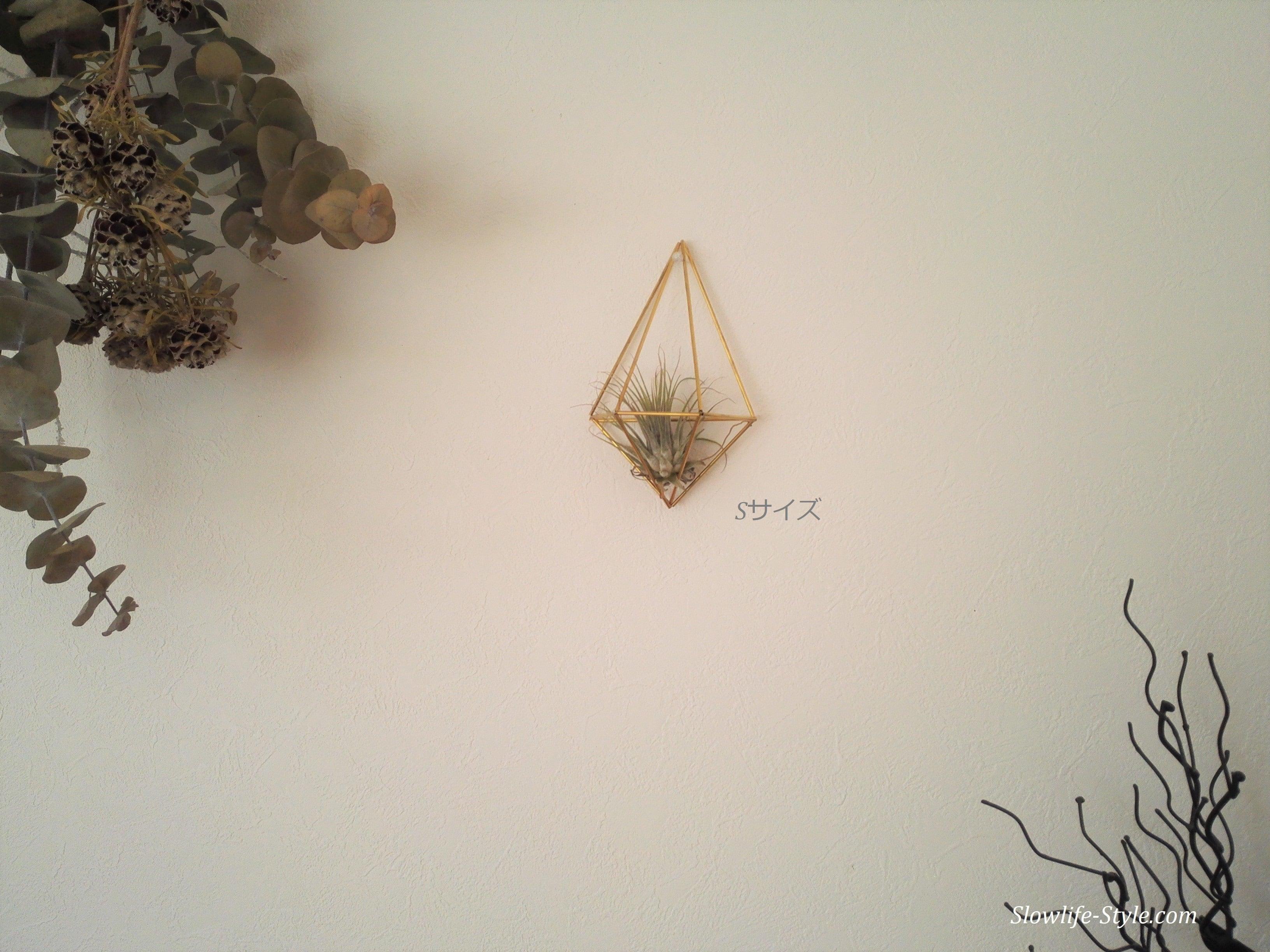 北欧インテリア「真鍮製のヒンメリ 壁掛けエアープランツホルダー Sサイズ」