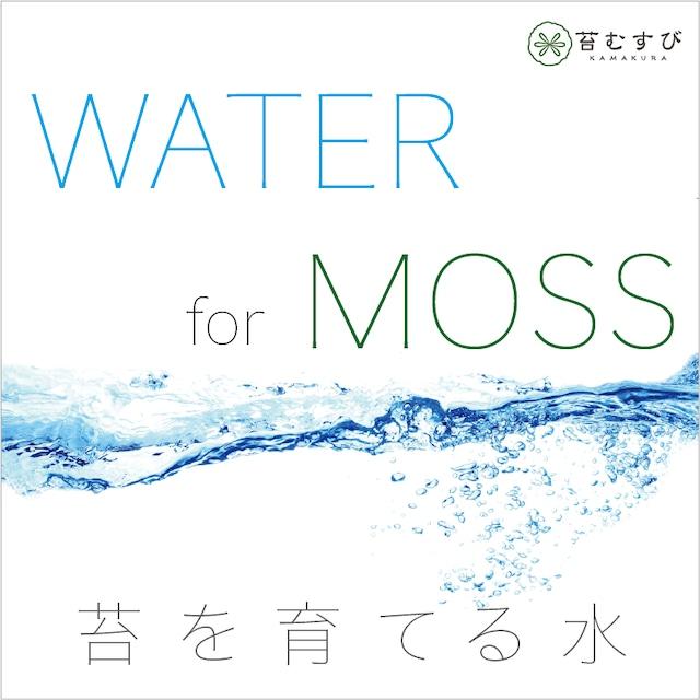 苔育成用の水(500cc×3袋)