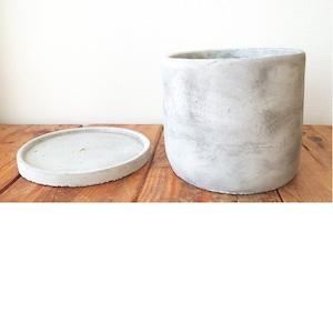 CX600M マルモ白M 鉢カバーのご紹介です。(弊社商品:山ぶどうに使用)