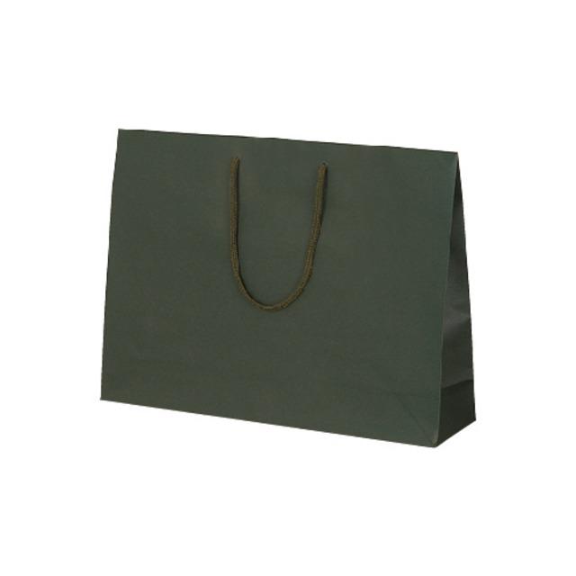 カラークラフト グリーン(XL)100枚