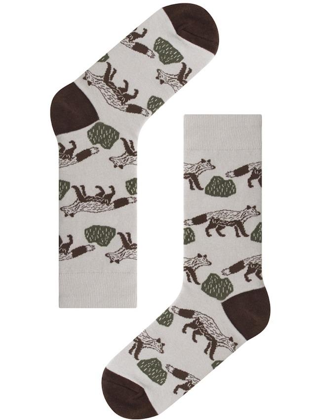 【kitty bunny pony】FOX