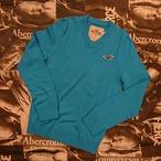 HOLLISTER メンズVネックセーターSサイズ