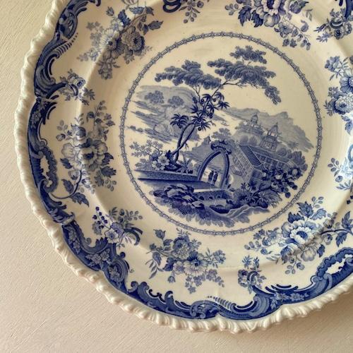 200歳の青いお皿