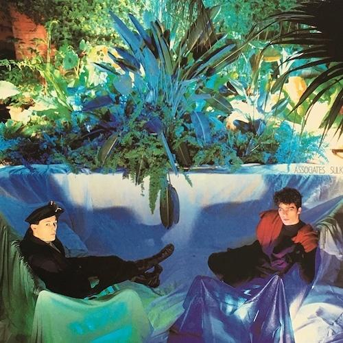 【LP・米盤】The Associates  /  Sulk