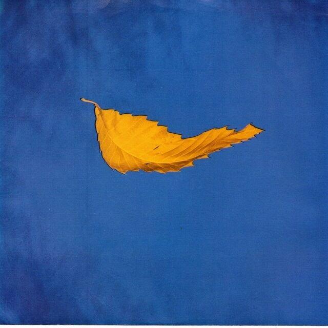 【7inch・米盤】New Order / True Faith