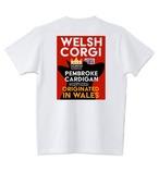 No.2020-welshcorgi-0001  : 5.6oz ウエルッシュ ・コーギー in Wels 横顔シャドーレッド