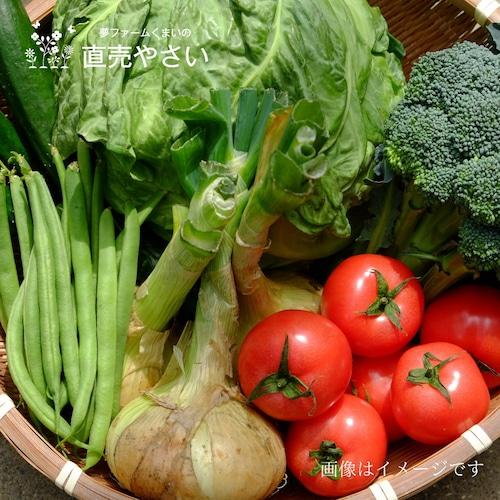 送料無料 8月の朝採り直売野菜セット 5点セット 夏野菜 毎週土曜日発送予定  【冷蔵便】農家直売