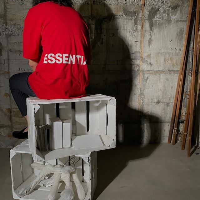 ESSENTIALS【エッセンシャルズ】Boxy T-shirt (RED).