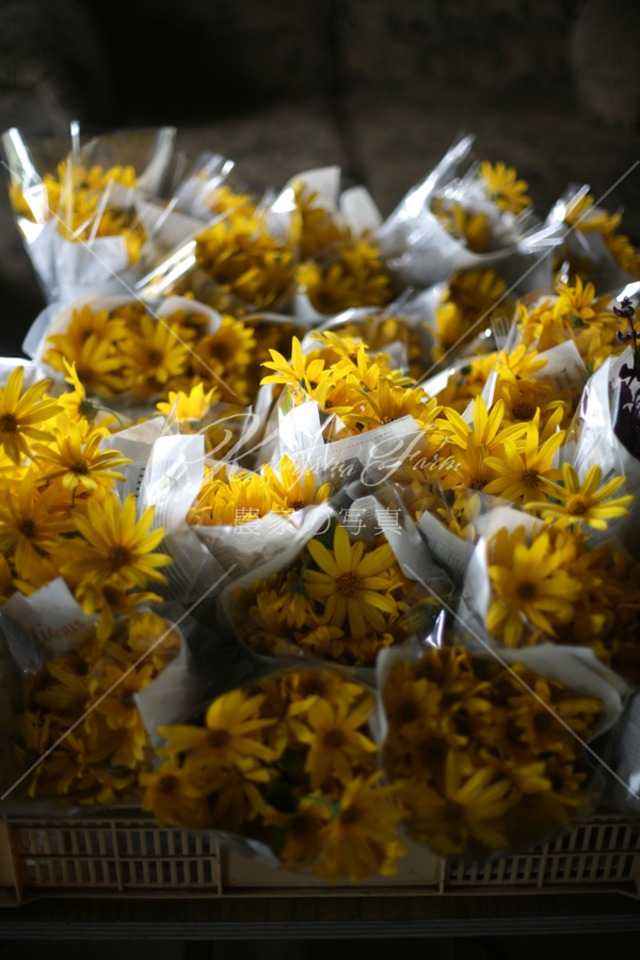 197 菊芋の花束「食用花」