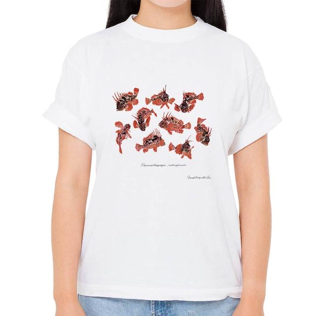 【ハオコゼ】長嶋祐成コレクション 魚の譜Tシャツ(高解像・昇華プリント)