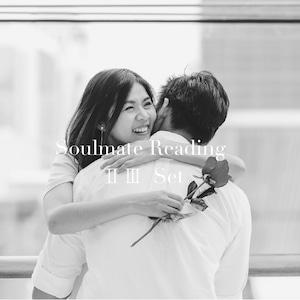 ソウルメイト【Ⅱ・Ⅲ】セット