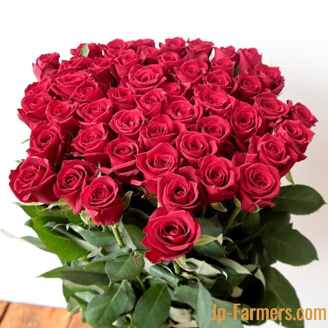 特別な贈り物として 国産高級 赤バラ60本!
