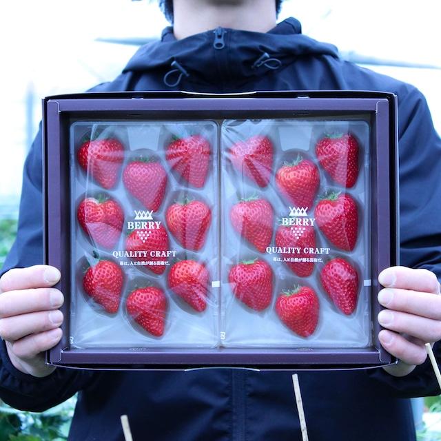 完熟よつぼし苺セット 伊賀農園直送(予約販売 2021年12月中旬〜2022年1月上旬頃発送)