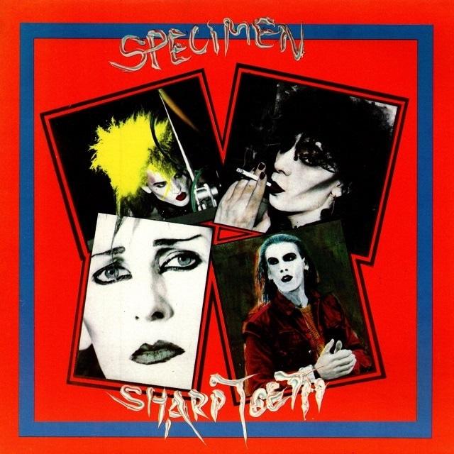 【7inch・英盤】Specimen / Sharp Teeth