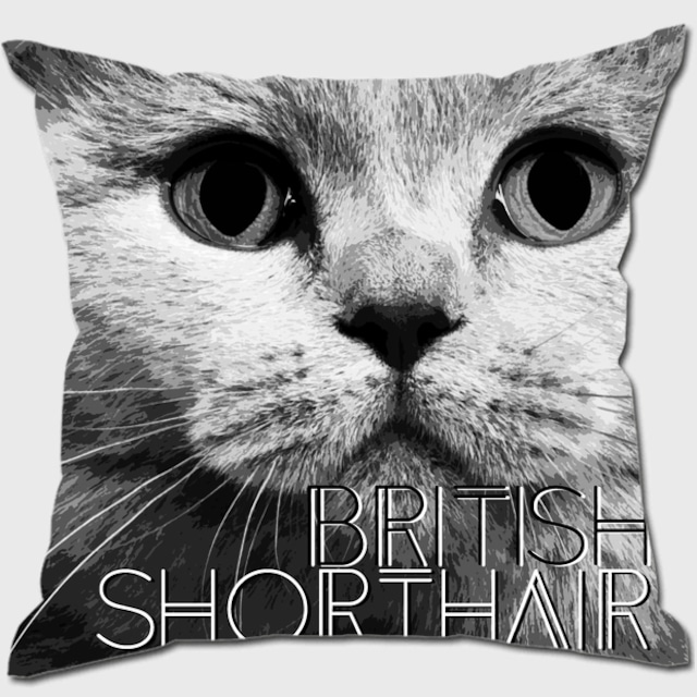 ブリティッシュショートヘア 【IMPACT -shirokuro- 猫 クッション】