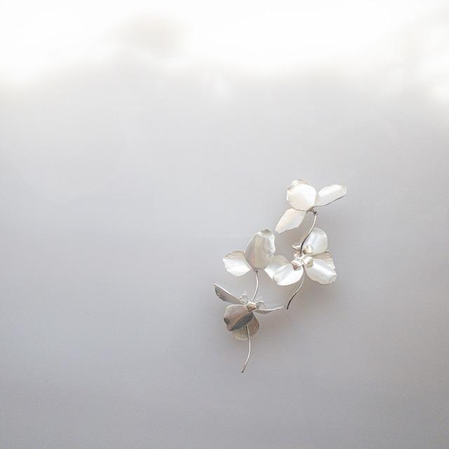 silver petal