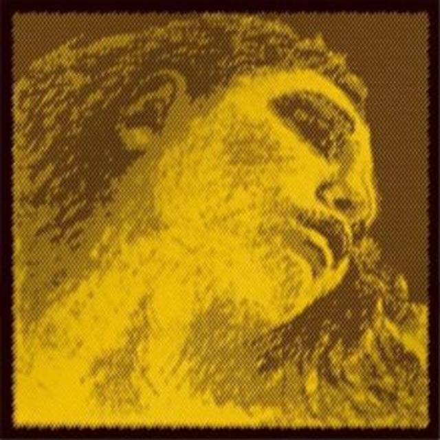 """ピラストロ / エヴァ・ピラッツィ・ゴールド """"ミッテル"""" (E線スチール/G線ゴールド)E・A・D・Gセット =E線ループエンド="""