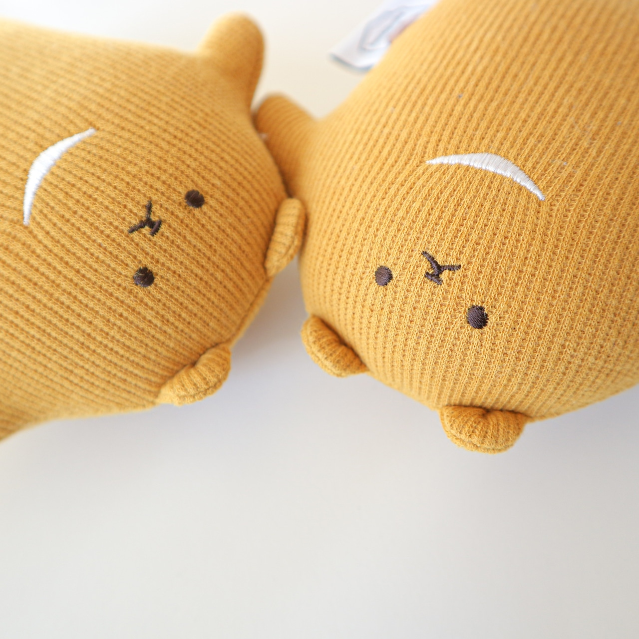 21,10月のつみきのわぐまさん(栗かぼちゃん