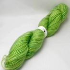 At11) 北海道産羊毛・グリーンの単糸
