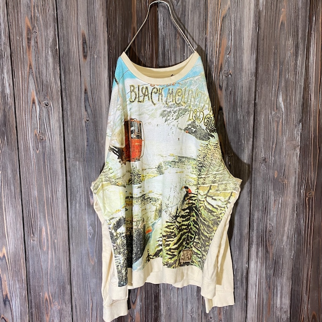 [used]ski area picture design long T shirt