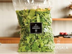 徳用 LOHASALA レタスミックス 500gパック×1個 無洗LED栽培野菜