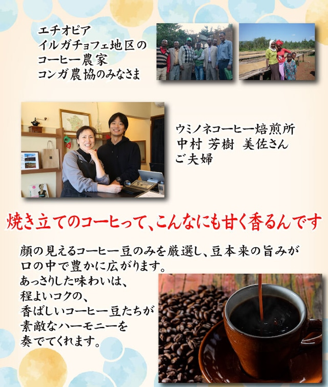 国内加工デカフェ 顔の見えるスペシャルティ―コーヒー100g エチオピア イルガチェフェ ナチュラル