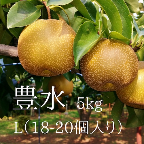梨狩りで大人気の品種!ご自宅用に!【小さめ】豊水18-20個入り(5kg)