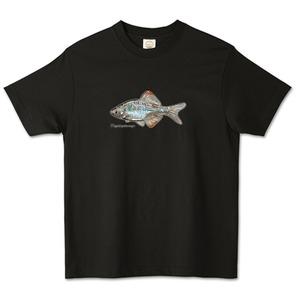 カゼトゲタナゴデザイン / オーガニックコットンTシャツ (TRUSS)