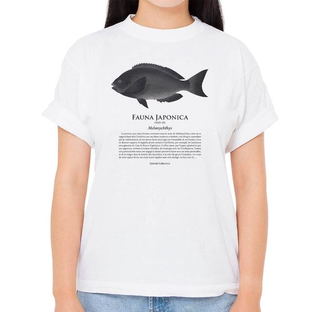 【クロメジナ】シーボルトコレクション魚譜Tシャツ(高解像・昇華プリント)