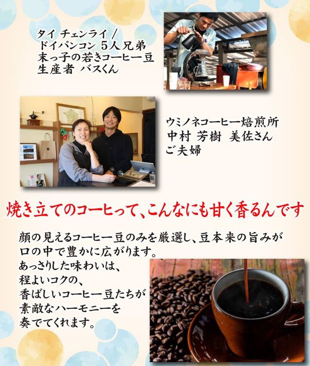 顔の見えるスペシャルティ―コーヒー200g タイ ドイパンコン ウォッシュド