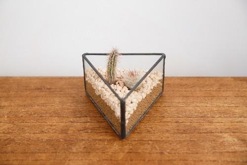 三角  ガラス テラリウム