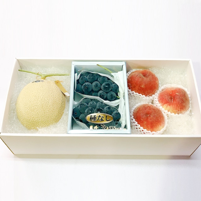 【旬の果物2種+静岡産マスクメロン】果物詰合せ10,000円セット