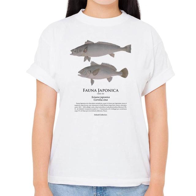 【オオニベ・シログチ】シーボルトコレクション魚譜Tシャツ(高解像・昇華プリント)