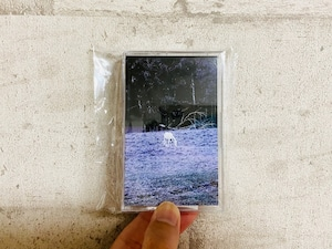 The Traveling Theory / S/T (テープ)
