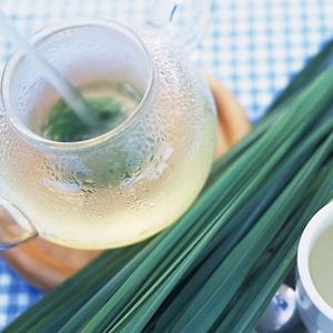 【国産】レモングラス