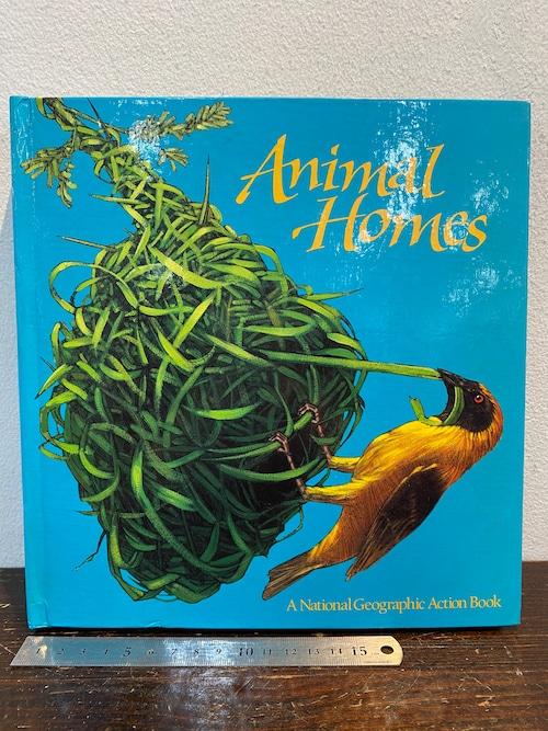 80's洋書しかけ絵本 Animal Homesナショナル・ジオグラフィックアクションブック