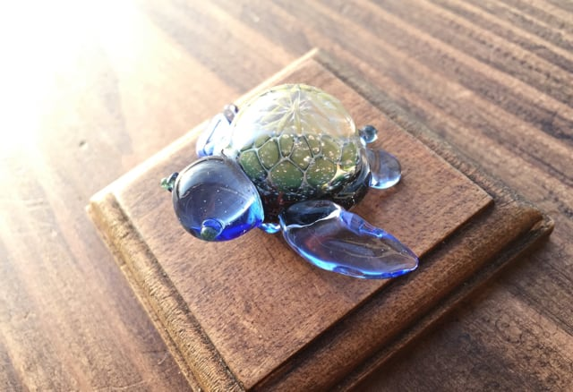 【blue seaturtle】〜宙亀〜