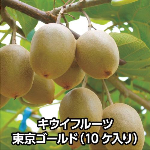 キウイフルーツ 東京ゴールド(10ケ入り)【送料込み】