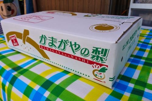 【ジューシーな大玉梨】新高中玉 5~6個入り 3kg