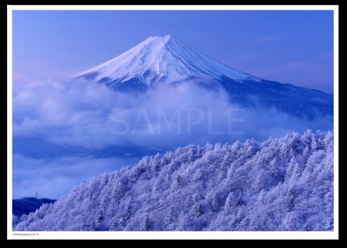 アート写真プリント A4サイズ 樹氷