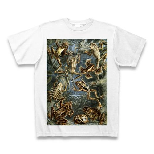 エルンスト・ヘッケル 超絶イラスト カエル Tシャツ -maylime- 【Ernst Haeckel】