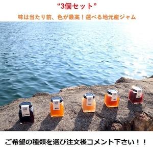 【お買い得】和歌山産 ジャム 3点セット【1瓶/100g】選べるジャム【送料無料】